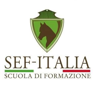 Sef-italia quadrato