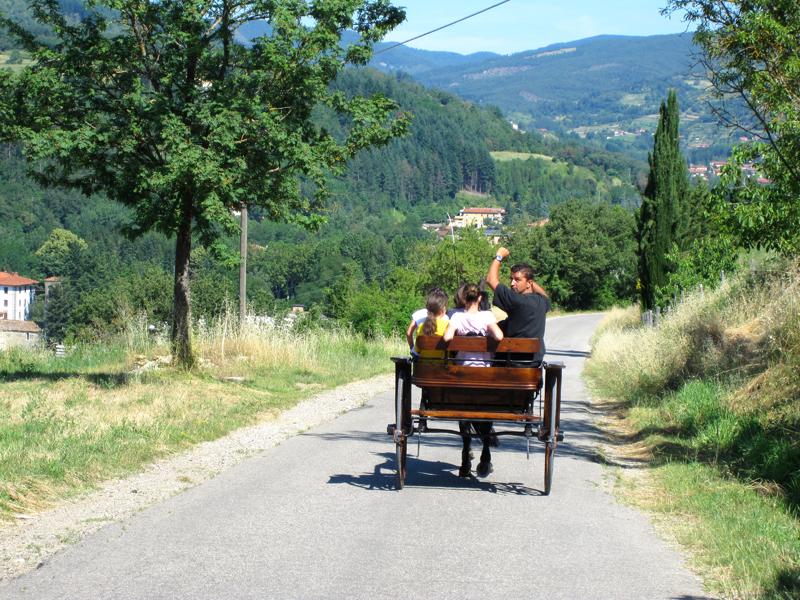 Lezioni San Donato