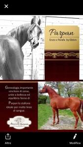 Parpan_genealogia